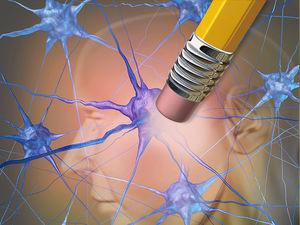 dt_150828_alzheimers_dementia_memory_loss_800x600