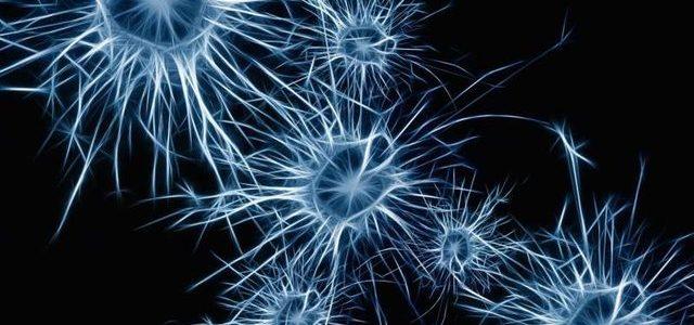 تولید سلولهای عصبی با ژن درمانی
