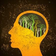 کوچک شدن مغز با عدم کنترل خشم در دراز مدت