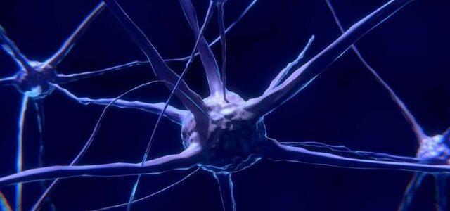 نقص ساختاری ملکولی دلیل بروزاوتیسم