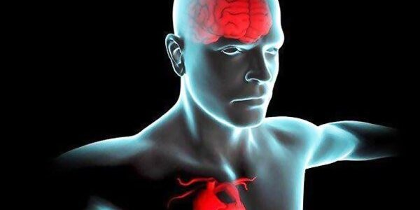 سلامت قلب در گروی سلامت روان